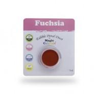 Χρώμα σε σκόνη της Magic Colours - Φούξια - Fushia 7ml.