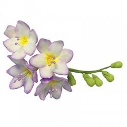 Κουπάτ για Λουλούδι Φρέζια - PME