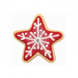 Αστέρια σετ 2 μεταλλικών κουπάτ για μπισκότα της PME